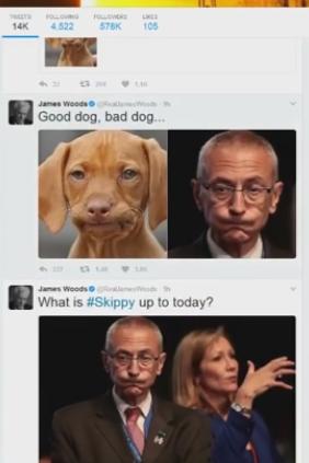 GOOD DOG BAD DOG